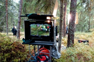 Spottikuvaus_metsä
